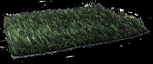 Fresh Grass PL903