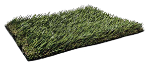 Fresh-Grass-PL919