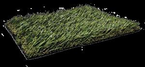 Fresh-Grass-PL919