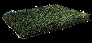 Fresh Grass PL920