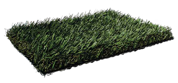 Fresh Grass PL920