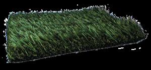 Fresh Grass PL921