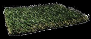 Fresh Grass PL924
