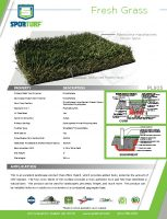 thumbnail of Fresh Grass PL925