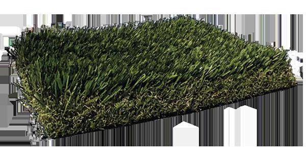 Fresh Grass PL925
