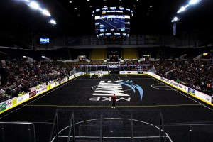 MKE Wave Black Turf Field