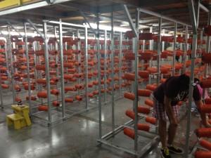 Midland Univ Orange Endzone 3
