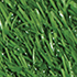 Field-Gree color swatch