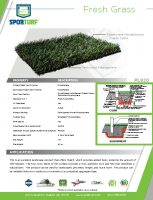 thumbnail of Fresh Grass PL920