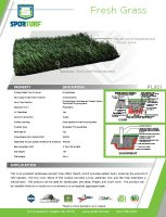 thumbnail of Fresh Grass PL921