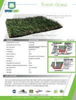 thumbnail of Fresh Grass PL924
