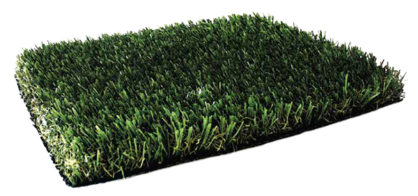 Fresh Grass PL929
